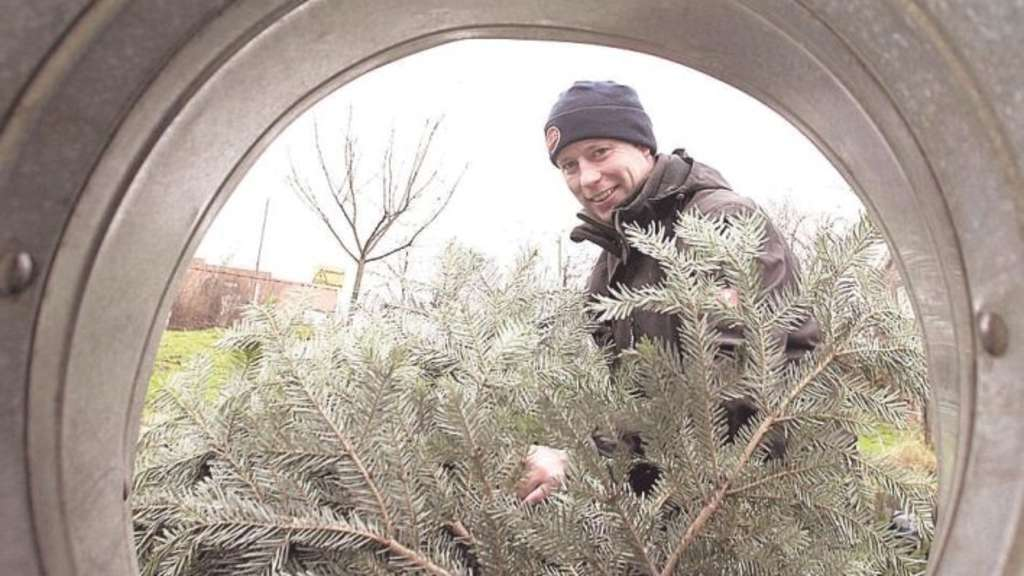 2014 soll der Baum auch riechen | Hückeswagen