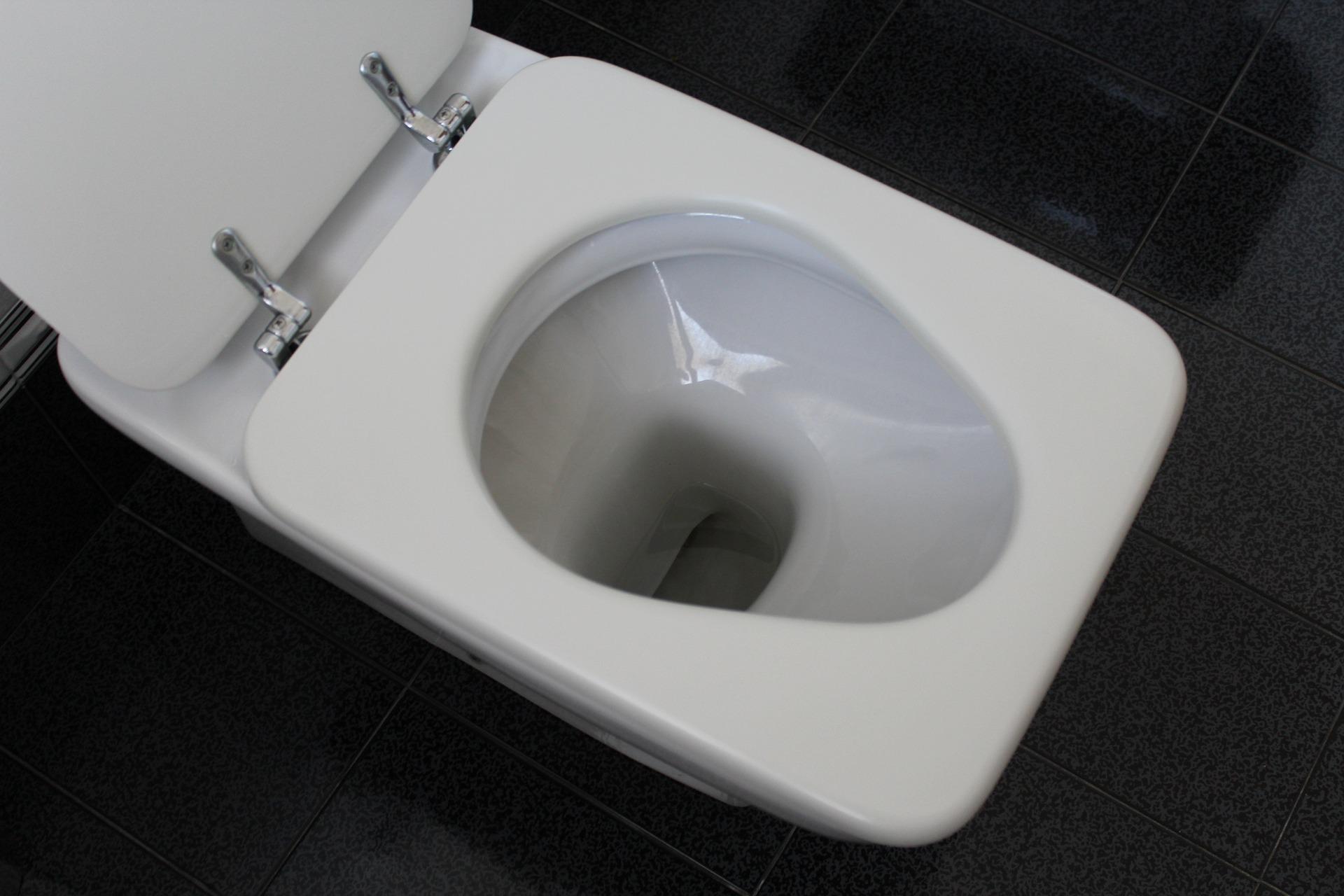 Toilette verstopft: Mit diesen Tricks wird sie wieder frei | Wohnen