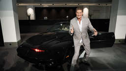 David Hasselhoff heiratet Freundin in Italien